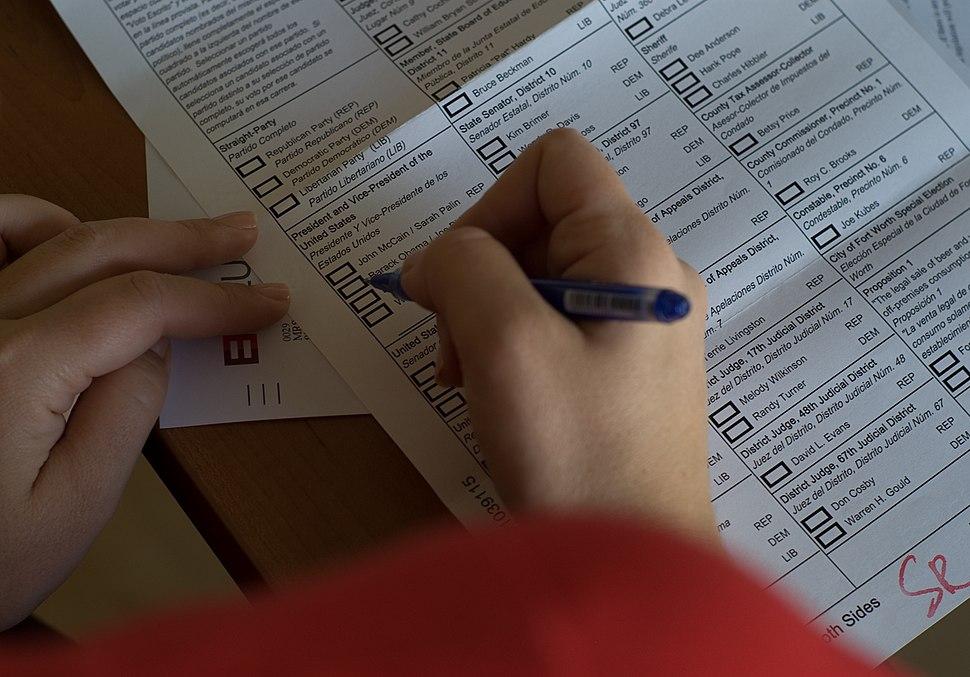 Larsz - US election 08 (by-sa)