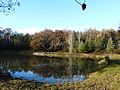 Le Change Lac Couyaud étang.JPG