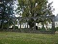 Le chateau de chateaubriant - panoramio (4).jpg