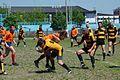 Lions-Krusevac 2011.jpg
