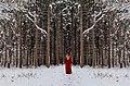 Little Red Riding Hood (Unsplash).jpg