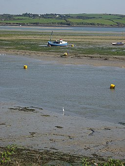 Little egret at Padstow - geograph.org.uk - 1532125