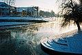 Ljubljanica at winter with ducks.jpg