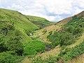 Loch Humphrey Burn - geograph.org.uk - 30673.jpg
