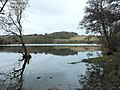 Loch of Clunie - geograph.org.uk - 78533.jpg