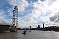London Eye and Westminster Palace.JPG