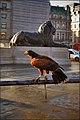 Londoners on Trafalgar square - panoramio.jpg