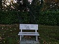 Long shot of the bench (OpenBenches 3036-1).jpg