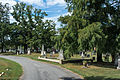 Looking S down East Tour Road - Glenwood Cemetery - 2014-09-14.jpg