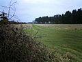 Looking South East towards Blackthorn Holt and Metheringham Airfield - geograph.org.uk - 98632.jpg