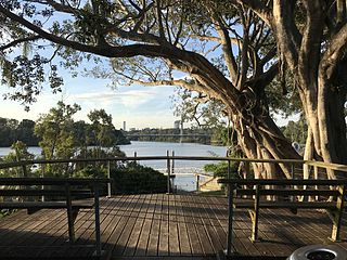 Fairfield, Queensland Suburb of Brisbane, Queensland, Australia