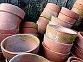 Lots of pots - geograph.org.uk - 1293889.jpg