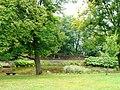 Lubostroń, park, ok. 1800m.JPG