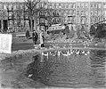 Lucas Bols eenden voerderen in Sarphatiepark, Bestanddeelnr 906-2796.jpg