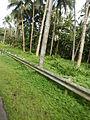 Lucban,Quezonjf9160 18.JPG