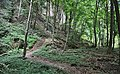 Luxembourg Beaufort Saueruecht 03.jpg