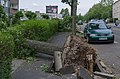 Mülheim an der Ruhr Heißen Sturmschäden Juli 2014 006.jpg