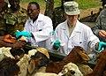 MEDFLAG 11, Ghana, July 2011 (5963615734).jpg