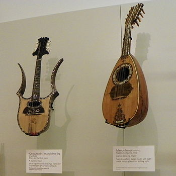 English: Left: Octochordis mandolino-lira (man...