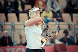 Fed Cup in Maribor, 2011