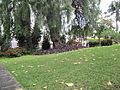 Madeira em Abril de 2011 IMG 1826 (5663690769).jpg