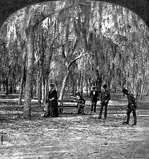 Magnolia, Florida - Image: Magnolia Florida Croquet Players no 34362