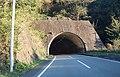 Magotaro Tunnel (Route 260).jpg