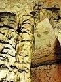 Magura cave, Hall of the stalactones - stalactone - Пещера Магурата, Зала на сталактоните - сталактон - panoramio (2).jpg