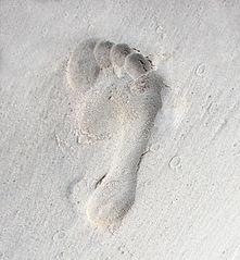 Az internetes lábnyom