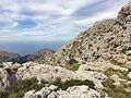 Mallorca (22298352330).jpg