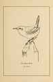 Manual of Bird Study 0023.png