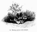 Manual of Gardening fig031.png