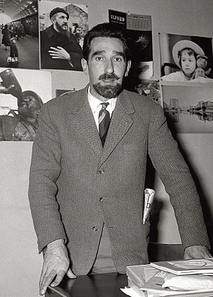Rigoni Stern, Mario (1921-2008)