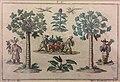 Martin Engelbrecht Chinesen transportieren exotische Pflanzen.jpg