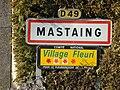 Mastaingp.jpg