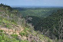 Maya Mountains, Cayo District, Belize.jpg