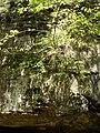 McConnells Mill State Park - Pennsylvania (4883356785).jpg