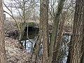 Mechower See IMG 3464.jpg