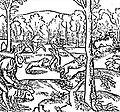 Medieval wolf hunt.jpg