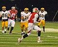 Mentor Cardinals vs. St. Ignatius Wildcats (11043649235).jpg