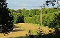 Mettingen Naturschutzgebiet Rote Brook 03.JPG