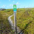 Miami Beach - Sand Dunes Flora - East Coast Greenway Sign and Path.jpg