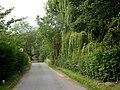 Mill Lane - geograph.org.uk - 1424453.jpg