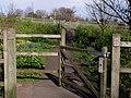 Millennium Green, St Marychurch - geograph.org.uk - 370297.jpg