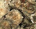 Millerite-oldeuro-105d.jpg
