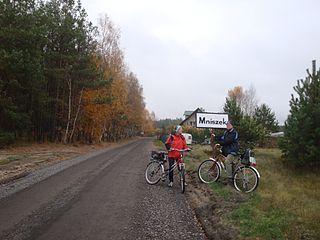 Mniszek, Pomeranian Voivodeship Village in Pomeranian, Poland