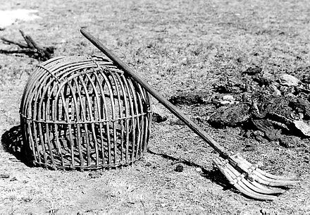 Basket and fork for gathering the dung (used as fuel in the yurts), Sukhbaatar Aimag, Mongolia, 1972 MongFuel.jpg