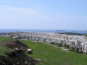 Monkodonja - Walls of Monkodonja
