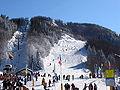 Monte Cimone Passo del lupo.jpg