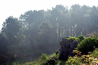 Monte Ulia 2.jpg